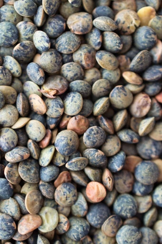 Le Puy green lentils are beautiful up close.