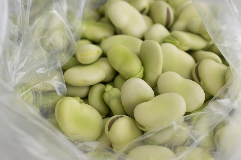 fava-beans-prep